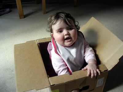Jasmine in her dialysis box
