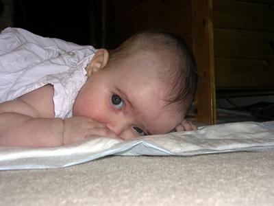 Jasmine lying on her front