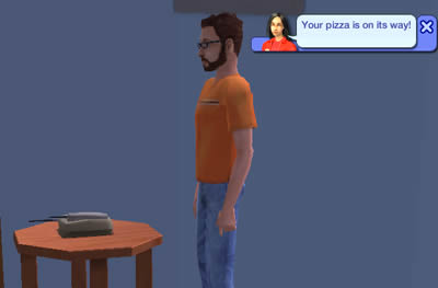SIM ordering pizza at thinkport.org