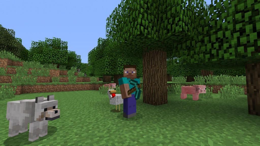 Minecraft from playstation